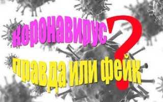 Акафист Введению во Храм Пресвятой Богородицы: текст, для чего читают