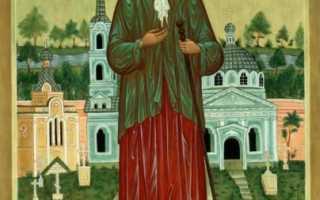 Ксения петербургская перед иконой о чем молятся
