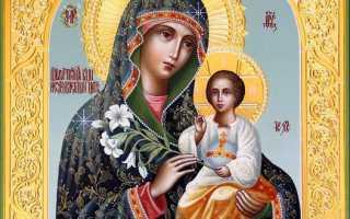Акафист и молитва пред иконой Богородицы «Неувядаемый Цвет»: текст, для чего читают