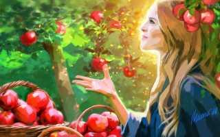 Преображение Господне: что можно и нельзя делать в праздник, день отмечания